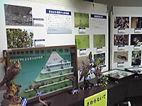 Image806